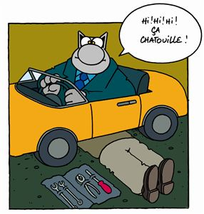 Optimiser son budget voiture - chat